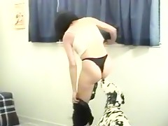 dog cock in ass