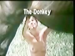 Caballo con mulata
