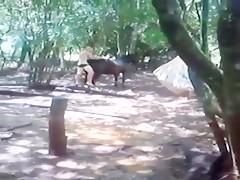 fun with donkey sex