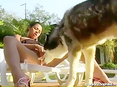 brazilian girls sex with dogs anal
